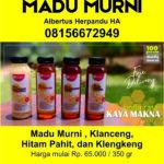 Agnes3-Madu-Murni-Herpandu.jpg